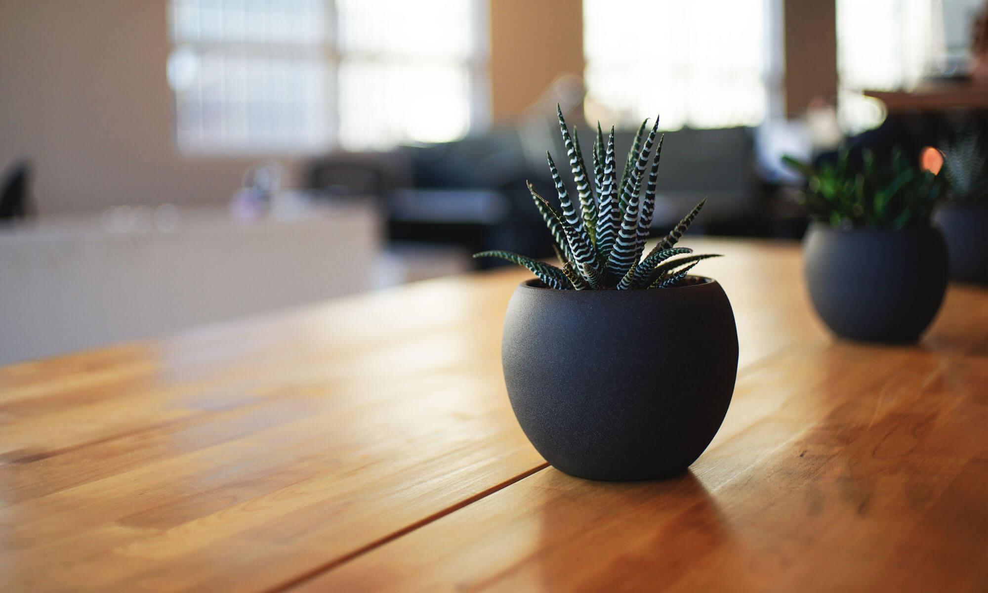 Business Return Advies om uw bedrijf te laten groeien